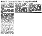 Scouts Learn Skills at Camp Pin...