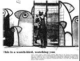This is a Watch-Bird, Watching You